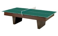Ping Pong Conversion Top for Billiard Table